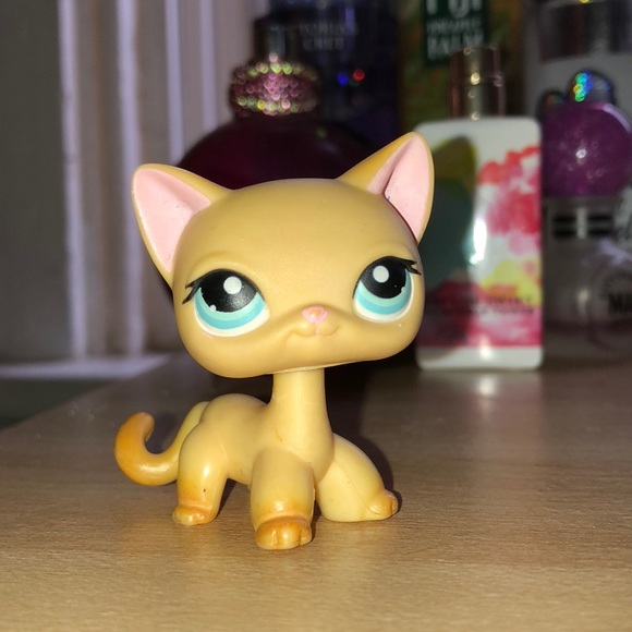 Littlest Pet Shop Shorthair Cat Numbers Guidomeyer